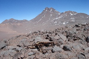 Wood (age unknown) on Cerro Negro de Pujsa. In the background Acamarachi
